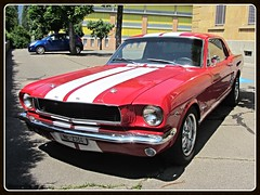 Ford Mustang 1964 (v8dub) Tags: auto old classic ford car schweiz switzerland automobile suisse muscle automotive voiture pony le american oldtimer mustang oldcar collector 1964 wagen pkw klassik landeron worldcars