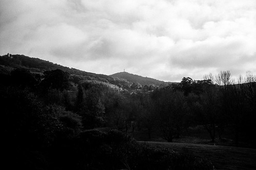 Mt Lofty View