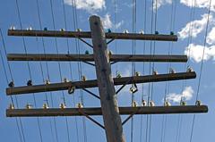 Sun Glint Glass Insulators (monon738) Tags: ohio electric power pentax telephone pole powerlines electricity powerpole telegraph csx electriclines insulator glassinsulator senecacounty poleline railroadpole smcpda50135mmf28edifsdm codeline k5iis csxpembervillesubdivision