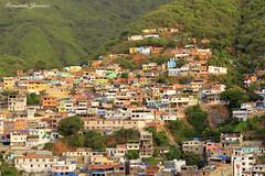 Favelas (alanchanflor) Tags: favelas color arquitectura pobreza venezuela la guaira montaña verde canon