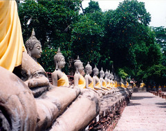 Wat Chai Watthamaran (Jae at Wits End) Tags: light sculpture plant tree art monument nature yellow statue stone way thailand religious temple shadows path route trail walkway repetition figure publicart pathway