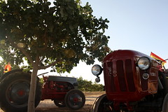 IMG_0376 (ACATCT) Tags: old espaa tractor spain traktor agosto toledo antiguo massey pistacho tembleque barreiros 2015 bustards perdices liebres avutardas ff30ds r350s
