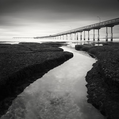 san diego : ocean beach pier (William Dunigan) Tags: san diego ocean beach pier black white photography low light long exposure motion blur water waves cloudy skies rock formation coast coastal seascape southwest southern california sea