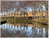Le canal du Midi (Jolivillage) Tags: jolivillage canal canaldumidi river fiume eau water wasser acqua reflets reflexions reflections arbres trees platanes planetrees picturesque geotagged hérault languedoc languedocroussillon occitanie capestang france francia europe europa