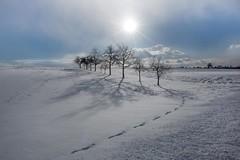 Wintersonne (SonjaS.) Tags: schnee winter snow landschaft landscape deutschland germany wolken clouds sonne sun strahlen