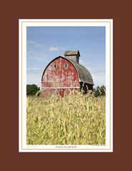 #164 NORTHERN IOWA RED GOTHIC (mdturn1) Tags: barns iowabarns oldbarns farming farm images photos history outbuildings farmshed cowshed shelter stable stall outhouse polebarn vintage classic heritage countryside historicbuildings oldfashioned nostalgic sentimentalfarm nostalgicmemories tradition rurallife rustic pastoral agricultural barnyard barnboard decor decorate decorating office home photoimages canvaspints galleryprints gallery