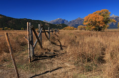High and Dry (alideniese) Tags: grandtetonnationalpark wyoming usa northamerica landscape grass mountains sunny outdoors hot fence bluesky trees