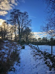 Contrails and snow-filled trails. Dunkeld, January 2017. (Jen_wilsonphotography) Tags: walking trees iphone sun contrails clouds bluesky snow winter scotland perthshire dunkeld