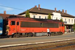 2015_Tapolca_0444 (emzepe) Tags: railroad station train de tren hungary nap state diesel gare engine railway zug bahnhof loco series locomotive bahn ungarn treno chemin fer kirnduls hungarian gara mv 2015 lokomotiv tapolca hongrie nyr napi vonat jlius vast vasutas mozdony lloms vastlloms rendezvny dzelmozdony tapolcai sorozat plyaszm