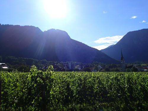Malans GR - Dorf mit Weinberg