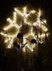 Blossoms of Light 36 (flowercat) Tags: blossomsoflight denverbotanicgardens lights christmaslights botanicgardens colorfullights night garden celebration