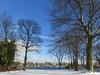 Winter 2017 Vol.2 (andtor) Tags: zeuthen zeuthenersee brandenburg germany winter schnee snow sonnig sunny kalt cold