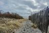 Path to the world.... (craigdrezek9) Tags: sand beach fence watchhill rhodeisland beachgrass ocean water sky landscape path sandypath beautiful nikon d7100 nikond7100 nikkor nikkor1424f28 28 1424 1424f28 watchhillrhodeisland