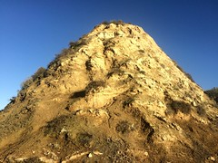 (ArgyleMJH) Tags: backbay california coronadelmar diatomite geology miocene montereyformation mudstone newportbeach orangecounty photostream sedimentary siltstone uppernewport