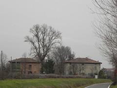 DSCN7613 (Gianluigi Roda / Photographer) Tags: lateautumn earlywinter countryside december