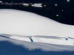 Black and white Antarctica Ski touring