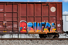 (o texano) Tags: houston texas graffiti trains freights bench benching biafra cbs