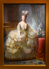 Queen Marie-Antoinette 1783 (Leone Fabre) Tags: oilpainting nationalgalleryofaustralia canberra painting queenmarieantoinette exhibition queen france versailles palace palacesetting