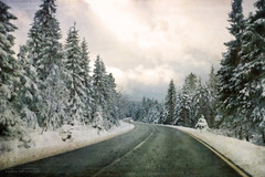 your way (silviaON) Tags: landscape road germany harz snow trees textured distressedtextures flypaper magicunicornverybest