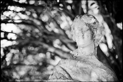 Lontananza (|γ|S| GammaSintesi) Tags: nikon fm2 fm2n nikkor 50mm ais blackandwhite bw ilford fp4plus film пленка italia италия italy monocrome pellicola v700 arsimago monobath bokeh