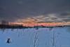 170110-07 Levé de soleil (clamato39) Tags: levédesoleil villedequébec quebeccity provincedequébec québec canada ciel sky hiver winter snow neige