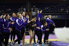 2017-02-11 UW vs ASU 123 (Susie Boyland) Tags: gymnastics uw huskies washington