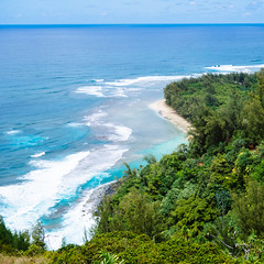 Day 705 [5/25/15]: Kalalau Trail (Buuck Photography) Tags: trees vacation beach beautiful forest square landscape photography hawaii colorful waves escape view unitedstates dailypic vibrant vivid hike adventure explore trail northshore kauai tropical viewpoint dailyphoto breathtaking inspiring photooftheday keebeach napalicoast kalalautrail haenastatepark project365 photoadaychallenge vsco outsideisfree buuckphotos buuckphotography vscofilm06