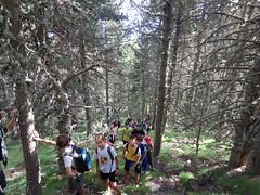 P7020117 (Club Pyrene) Tags: cerdanya estiu pirineos pirineus campaments pyrene campamentos colònies coloniesestiu coloniesestiupyrene colòniesestiu