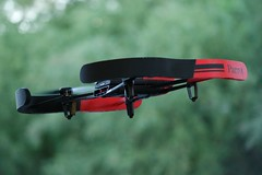thats a funny bird :P (dominik.gaida) Tags: parrot bebop drone