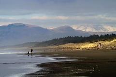 Beach walk, Spencer Park, Christchurch , New Zealand (Maureen Pierre) Tags: ocean light newzealand christchurch snow beach water wave spencerpark