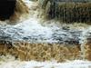 clare 029edit (barry.oshea) Tags: ireland sea white black water clare donkey ennistymon lehinch