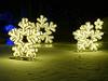 Blossoms of Light 19 (flowercat) Tags: blossomsoflight denverbotanicgardens lights christmaslights botanicgardens colorfullights night garden celebration