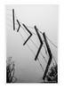 Barbed Wire Refection (Paul Compton (PDphotography)) Tags: fog mist tree weather barbed wire fence reflection mirror