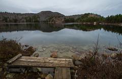 Acadia National Park (@sofiaD) Tags: purple acadia landscape travel hike
