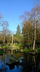 Kyoto Gardens, Holland Park (felixkemp1) Tags: kyoto gardens hollandpark landscape portrait japan japanese reflection pond bonsai trees nature fuji fujixt2