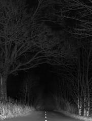 IMG_6231.jpg (garycarter5) Tags: road night headlights kirkby lonsdale