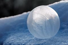❄️️ Frozen Soap Bubble [explored 01.02.2017] (Wenninger Johannes) Tags: frozen soap bubble bubbles blase blasen gefroren eis ice natur nature naturfoto snow schnee winter austria österreich canoneos70d