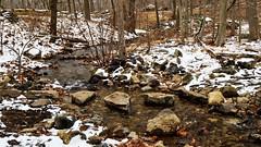Steppingstones (Lojones13) Tags: rocks stones brook landscape snow trees nature water steppingstones newyork bearmountain outside winter d5300