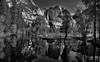Reflections of Yosemite Falls on the Merced River (Black & White, Yosemite National Park) (thor_mark ) Tags: blackwhite blueskies capturenx2edited centralyosemitesierra colorefexpro day4 glassreflections grassymeadow hillsideoftrees indiancanyon lakereflectionsonwater landscape lookingne mercedriver mountains mountainsindistance mountainsoffindistance nature nikond800e outside pacificranges project365 reflections reflectionsonlake reflectionsonwater river riverbank sierranevada silverefexpro2 trees triptopasoroblesandyosemite upperyosemitefall waterreflections waterreflectionsofmountains waterfalls yosemitefalls yosemitenationalpark yosemitepoint yosemitevalley yosemiterittersierranevada california unitedstates