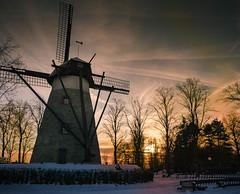 """"""" Sunset Ochtruper Kornwindmühle aus 1848 """" #Windmill 1848# (Kalbonsai) Tags: ochtrup windmill windmolen koren molen korn nikon d5100 1685mm outdoorphotography sunset 1848 natur trees"""