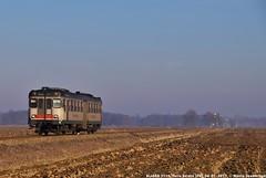 ALn668 3111 - Singola in livrea Trenord (MattiaDeambrogio) Tags: treno treni train trains aln668 3111 trenord pavia alessandria torreberetti