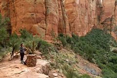 IMG_6546 (dvdstvns) Tags: arizona cathedralrock sedona