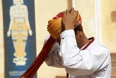 Jodhpur ( Rajasthan )- Fort Mehrangarh