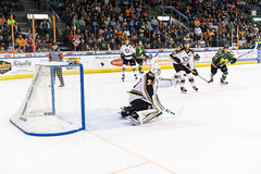 "Missouri Mavericks vs. Quad City Mallards, January 21, 2017, Silverstein Eye Centers Arena, Independence, Missouri.  Photo: John Howe / Howe Creative Photography • <a style=""font-size:0.8em;"" href=""http://www.flickr.com/photos/134016632@N02/32527846465/"" target=""_blank"">View on Flickr</a>"