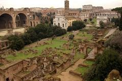 Rome 2010 1616