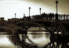 Bridge in Tsaritsyno (Lyutik966) Tags: bridge tsaritsyno moscow russia manor pond fountain architecture people silhouette reflection lantern
