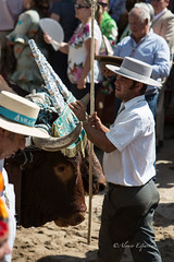 AE5D0816 (alonsoesparterofoto) Tags: caballo alma imagenes alonso rocio ermita bombo flamenca buey flauta gitana romeria campero botos tamboril bueyes rociero carriola simpecado tamborilero espartero rociera gibraleon sinpecado alonsoespartero