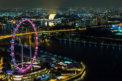 Singapore Flyer (RobertLyndonDavis) Tags: city travel wheel night flyer singapore sony ferris a7s