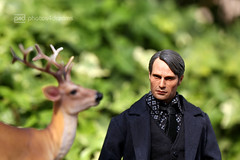 the hunter & the deer -p4d- 014 (photos4dreams) Tags: people man monster photoshop butterfly toy blood inch doll stag action dr photoshopped moth deer plastic doctor will killer figure nightmare 12 psychic serie episode serial murderer hannibal cannibal hirsch lecter schmetterling antler cannibalism shrink geweih motte season2 psychologist mrder albtraum madsmikkelsen psychologe headsculpt kannibale psychiater willgraham jackcrawford dasschweigenderlmmer photos4dreams photos4dreamz p4d alanabloom thehunterthedeerp4d