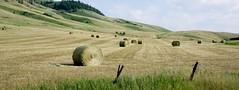 Ewan Ranch (Tracy Hunter) Tags: monatana